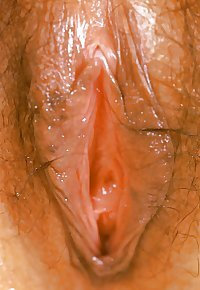 Amateur Asian
